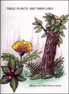 treesplants